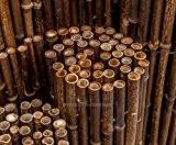 Bambusmatte schwarz, sehr stabile Ausführung, 200x250cm, Bambusrohrdurchmesser ca.24mm - Sichtschutzmatte Bambus Matten