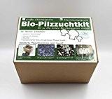 Bio Steinchampignon-Pilzzuchtset im Pilzzuchtkarton, ganzjährig Pilze selber züchten