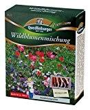 Blumenwiese - Wildblumenmischung (ohne Gräser) von Quedlinburger Saatgut