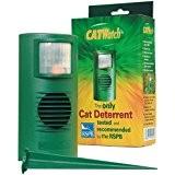 CATWatch-Die Nur Katze und Pest Abschreckung, die tatsächlich funktioniert.-von CATWatch