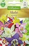 Chrestensen Akelei 'Mischung'