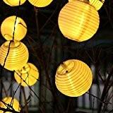Lampions Wetterfest Toller Garten