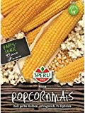 Popcornmais Nana F1