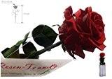 Rosen-te-amo Rote Rose (Konservierte Rose) - Haltbare Blume (echte Blume) über JAHRE haltbar ohne WASSER - perfekt als Geschenk und ...