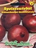 Zwiebel Braunschweiger Dunkelblutrote (Portion)