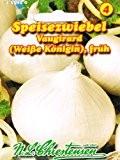 Zwiebel Weiße Königin (Portion)